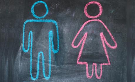 gender.jpg_resized_460_